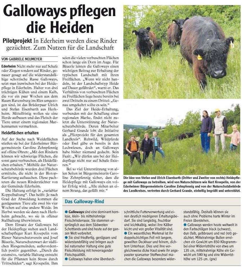 Zeitungsartikel: Galloways pflegen die Heide